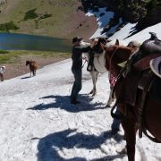 Trail Riders of the Canadian Rockies